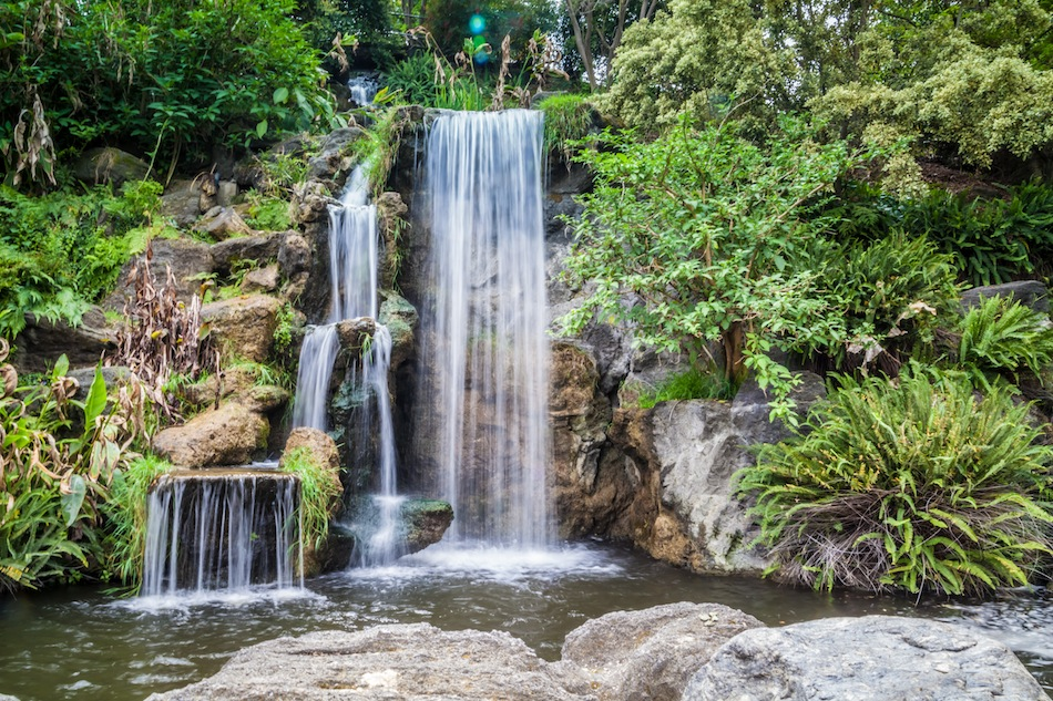 LA_Arboretum